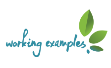 Working Examples logo